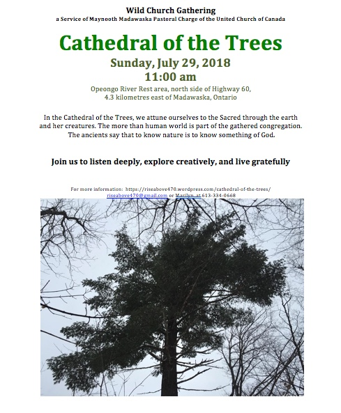 Cathedral of the trees 1st service ad